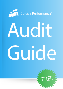 audit-guide-icon